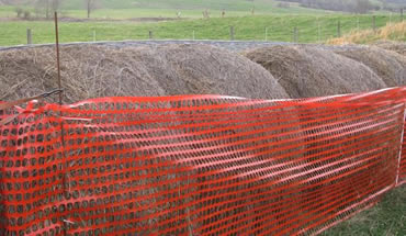 Orange snow fence protects hay bales against sheep on farmland