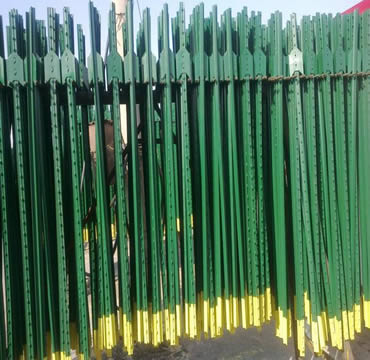 Several green-yellow snow fence